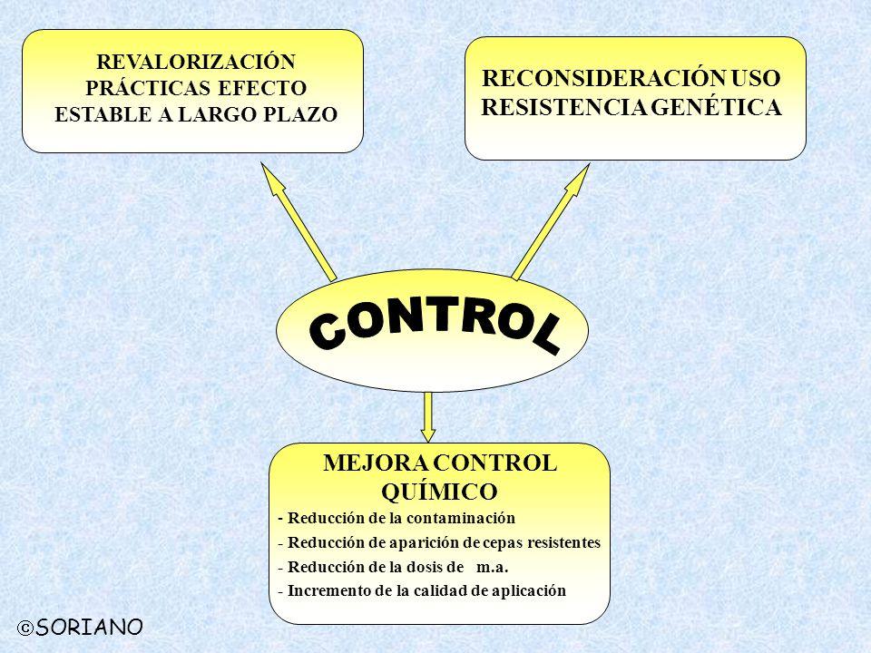 SORIANO REVALORIZACIÓN PRÁCTICAS EFECTO ESTABLE A LARGO PLAZO RECONSIDERACIÓN USO RESISTENCIA GENÉTICA MEJORA CONTROL QUÍMICO - Reducción de la contam