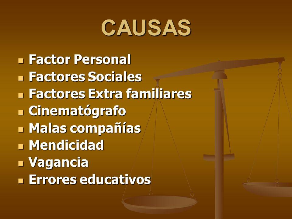 CAUSAS Factor Personal Factor Personal Factores Sociales Factores Sociales Factores Extra familiares Factores Extra familiares Cinematógrafo Cinematóg