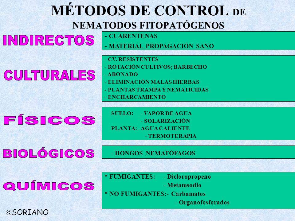MÉTODOS DE CONTROL DE NEMATODOS FITOPATÓGENOS * FUMIGANTES:- Dicloropropeno - Metamsodio * NO FUMIGANTES:- Carbamatos - Organofosforados - CUARENTENAS