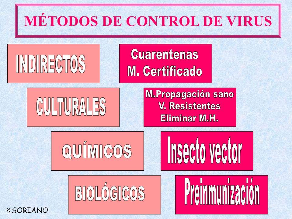 SORIANO MÉTODOS DE CONTROL DE VIRUS