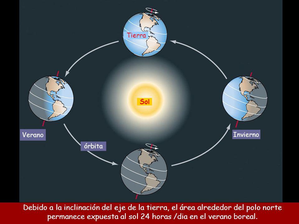 Debido a la inclinación del eje de la tierra, el área alrededor del polo norte permanece expuesta al sol 24 horas /dia en el verano boreal.