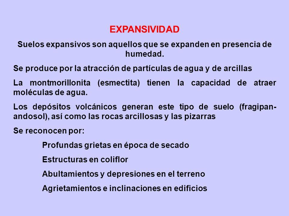 EXPANSIVIDAD Suelos expansivos son aquellos que se expanden en presencia de humedad. Se produce por la atracción de partículas de agua y de arcillas L
