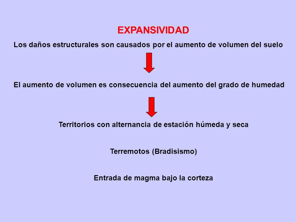 EXPANSIVIDAD Los daños estructurales son causados por el aumento de volumen del suelo El aumento de volumen es consecuencia del aumento del grado de h