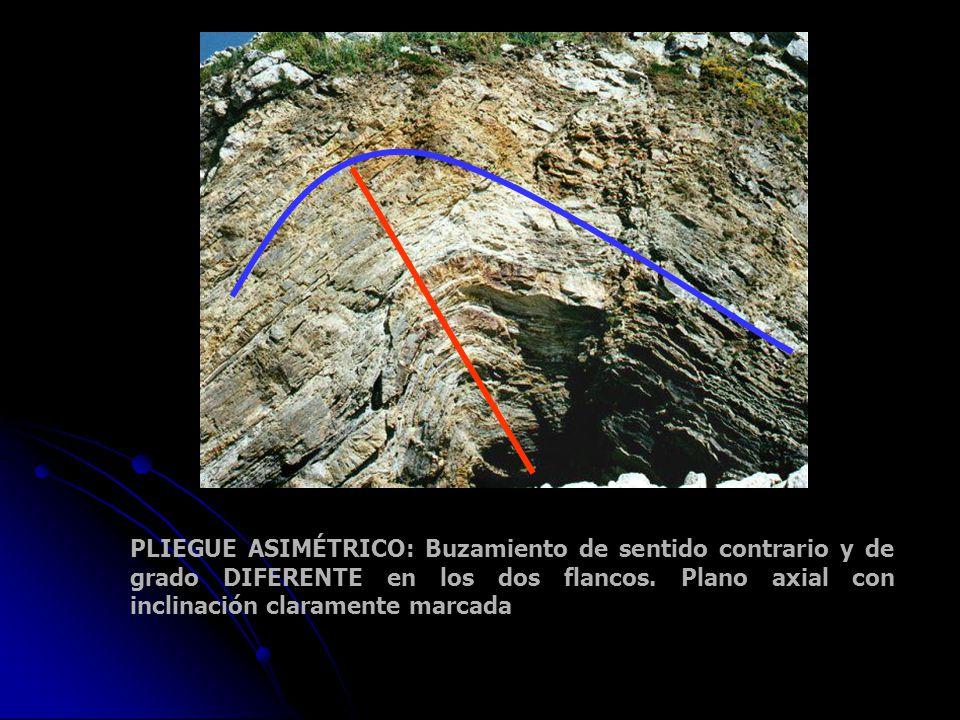 PLIEGUE ASIMÉTRICO: Buzamiento de sentido contrario y de grado DIFERENTE en los dos flancos. Plano axial con inclinación claramente marcada