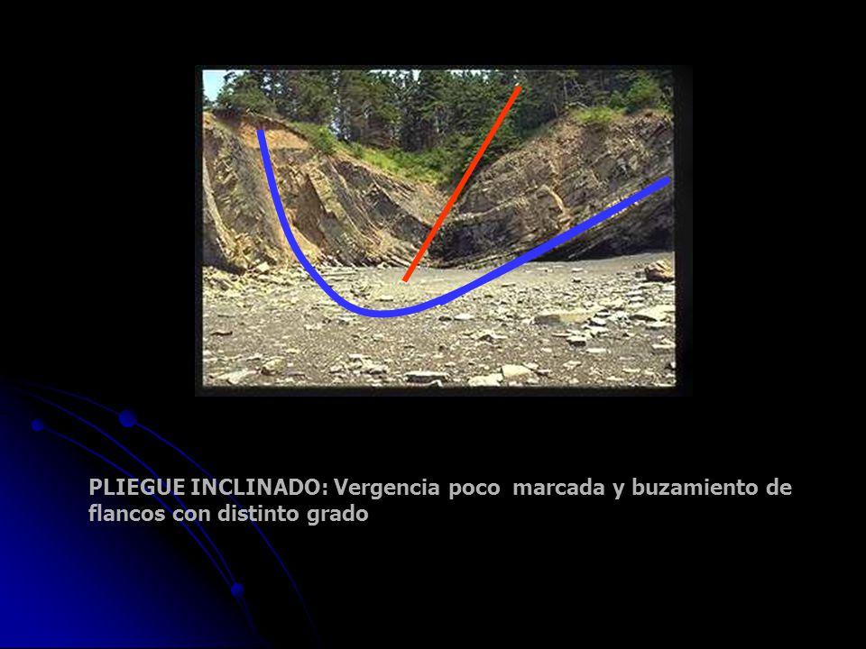 PLIEGUE INCLINADO: Vergencia poco marcada y buzamiento de flancos con distinto grado