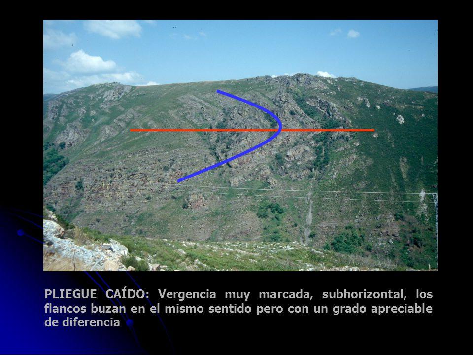 PLIEGUE CAÍDO: Vergencia muy marcada, subhorizontal, los flancos buzan en el mismo sentido pero con un grado apreciable de diferencia