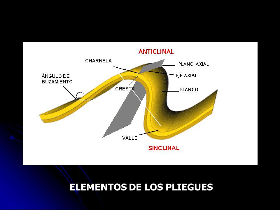 ELEMENTOS DE LOS PLIEGUES