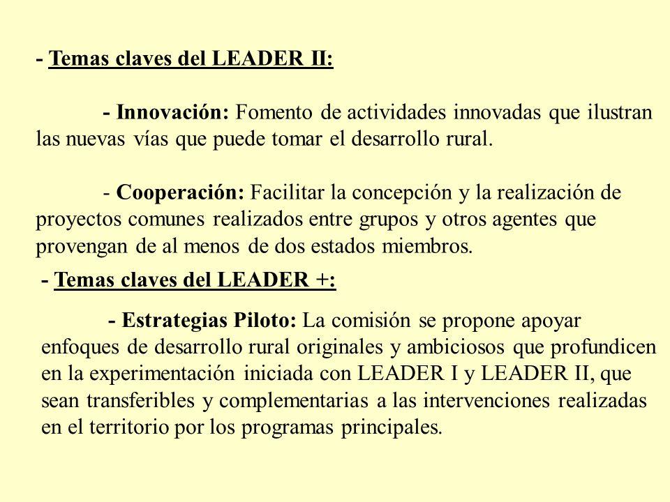 - Temas claves del LEADER II: - Innovación: Fomento de actividades innovadas que ilustran las nuevas vías que puede tomar el desarrollo rural. - Coope