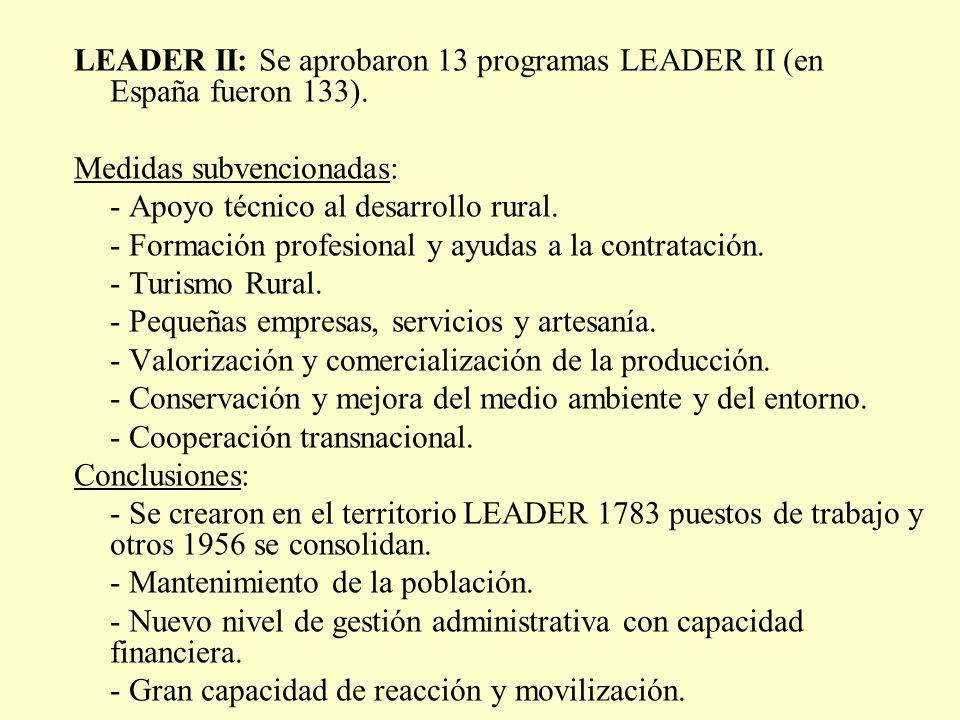 LEADER II: Se aprobaron 13 programas LEADER II (en España fueron 133). Medidas subvencionadas: - Apoyo técnico al desarrollo rural. - Formación profes