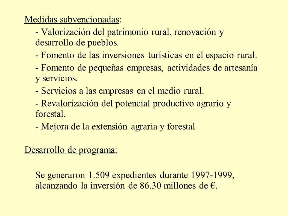 Medidas subvencionadas: - Valorización del patrimonio rural, renovación y desarrollo de pueblos. - Fomento de las inversiones turísticas en el espacio