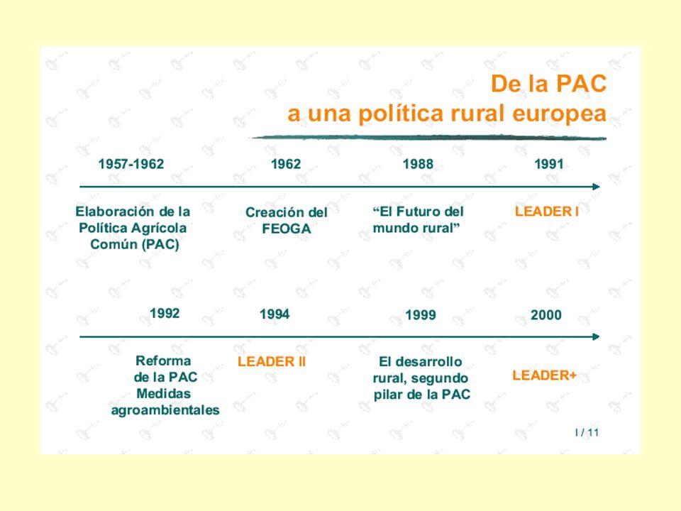 - Las zonas rurales representan más del 80% del territorio de la Unión Europea y más de una cuarta parte de su población.