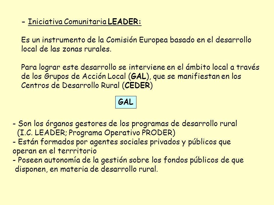 - Iniciativa Comunitaria LEADER: Es un instrumento de la Comisión Europea basado en el desarrollo local de las zonas rurales. Para lograr este desarro