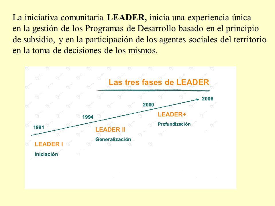 1992-19941995-19992000-2006 PROGRAMASLEADER I LEADER II y PRODER I LEADER + y PRODER II MUNICIPIOS19.8%68%95% HABITANTES15%43%68.7% (RESUMEN)