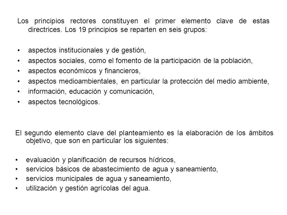 Los principios rectores constituyen el primer elemento clave de estas directrices. Los 19 principios se reparten en seis grupos: aspectos instituciona