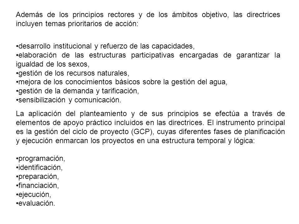 Además de los principios rectores y de los ámbitos objetivo, las directrices incluyen temas prioritarios de acción: desarrollo institucional y refuerz