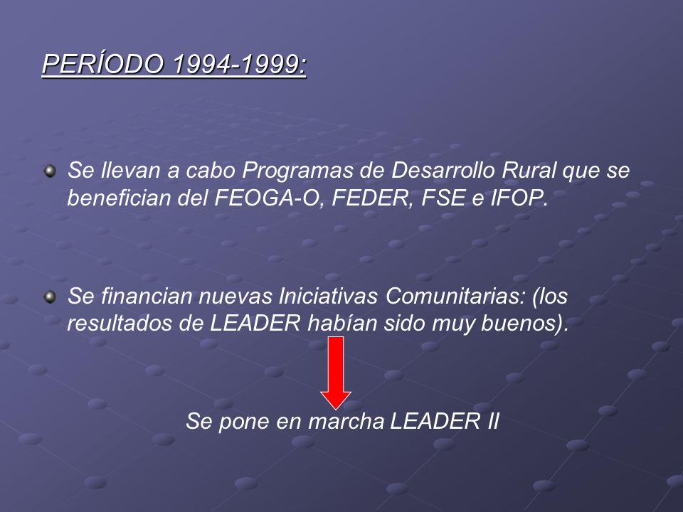 PERÍODO 1994-1999: Se llevan a cabo Programas de Desarrollo Rural que se benefician del FEOGA-O, FEDER, FSE e IFOP. Se financian nuevas Iniciativas Co