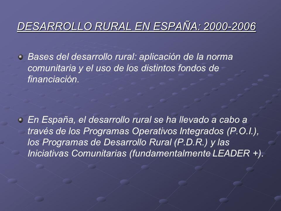 DESARROLLO RURAL EN ESPAÑA: 2000-2006 Bases del desarrollo rural: aplicación de la norma comunitaria y el uso de los distintos fondos de financiación.