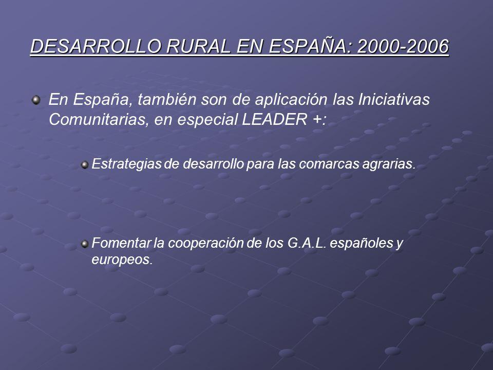 DESARROLLO RURAL EN ESPAÑA: 2000-2006 En España, también son de aplicación las Iniciativas Comunitarias, en especial LEADER +: Estrategias de desarrol
