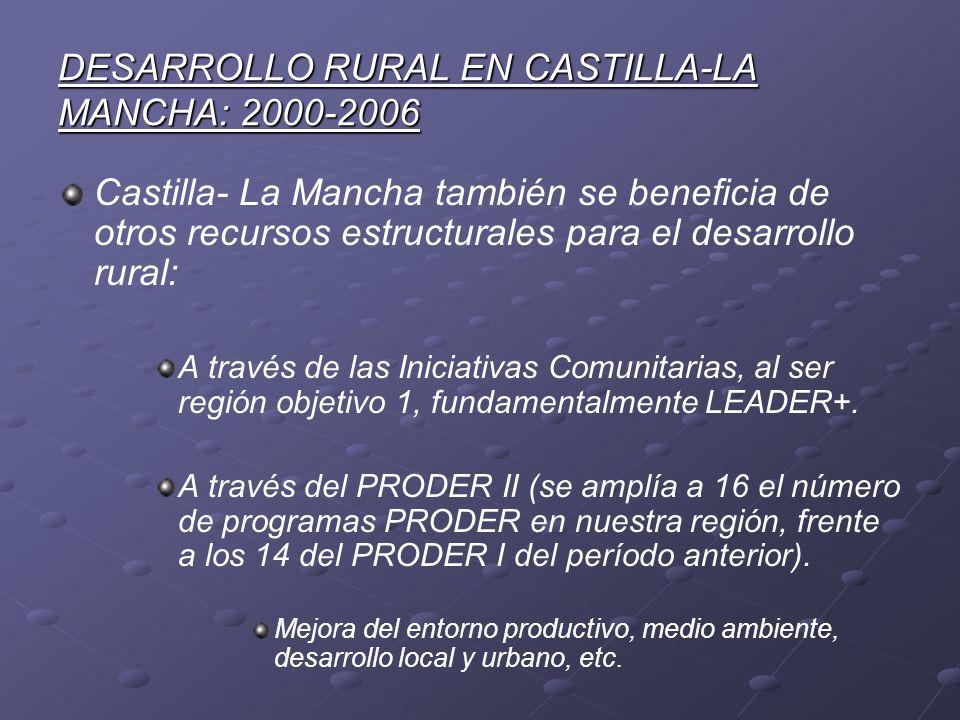 DESARROLLO RURAL EN CASTILLA-LA MANCHA: 2000-2006 Castilla- La Mancha también se beneficia de otros recursos estructurales para el desarrollo rural: A