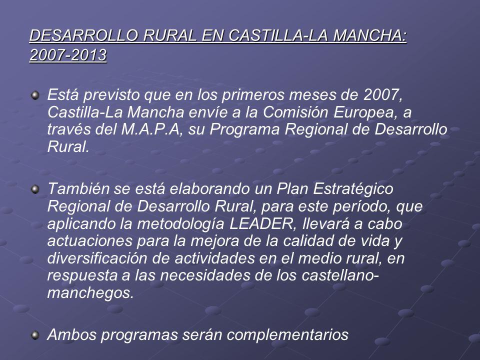 DESARROLLO RURAL EN CASTILLA-LA MANCHA: 2007-2013 Está previsto que en los primeros meses de 2007, Castilla-La Mancha envíe a la Comisión Europea, a t