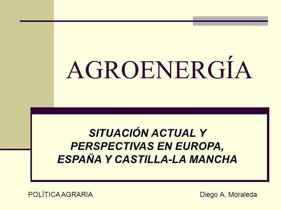 AGROENERGÍA SITUACIÓN ACTUAL Y PERSPECTIVAS EN EUROPA, ESPAÑA Y CASTILLA-LA MANCHA POLÍTICA AGRARIA Diego A. Moraleda