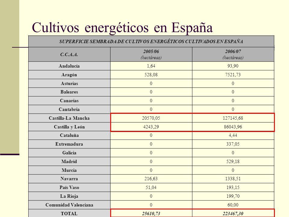 Cultivos energéticos en España SUPERFICIE SEMBRADA DE CULTIVOS ENERGÉTICOS CULTIVADOS EN ESPAÑA C.C.A.A. 2005/06 (hectáreas) 2006/07 (hectáreas) Andal