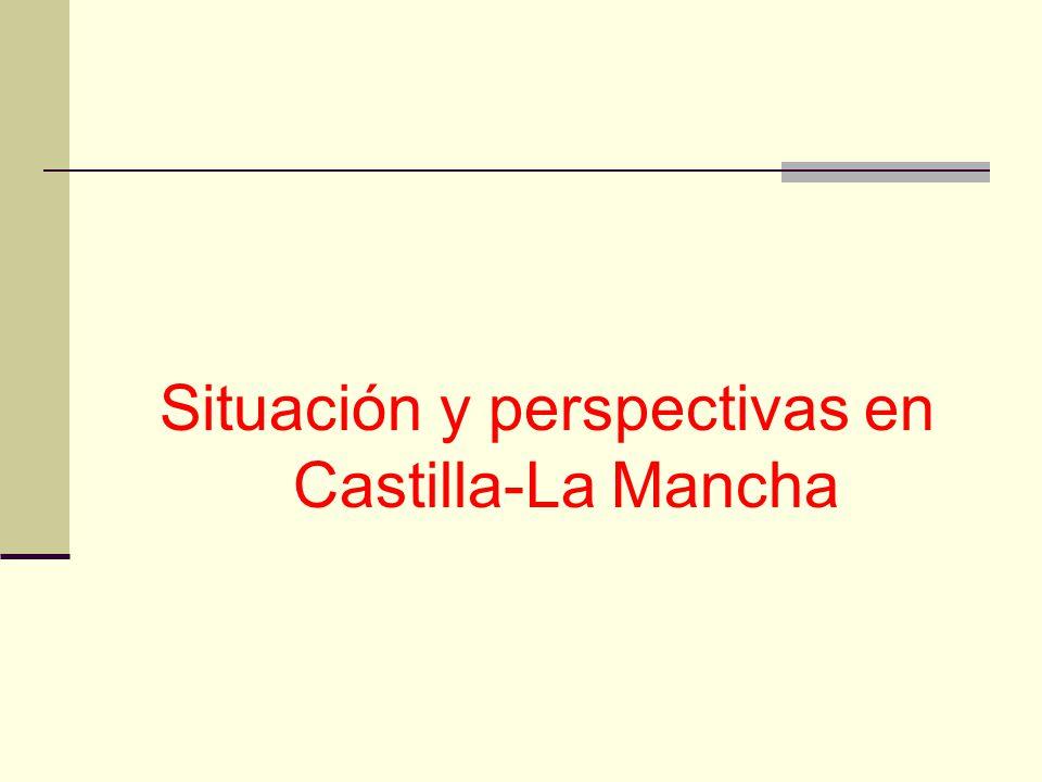 Situación y perspectivas en Castilla-La Mancha