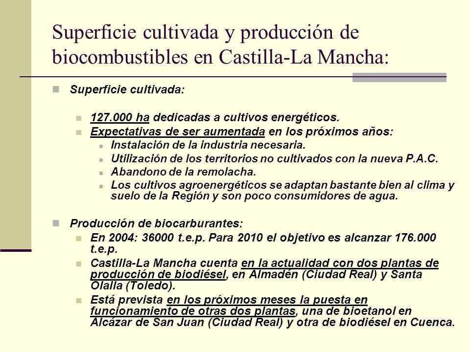 Superficie cultivada y producción de biocombustibles en Castilla-La Mancha: Superficie cultivada: 127.000 ha dedicadas a cultivos energéticos. Expecta