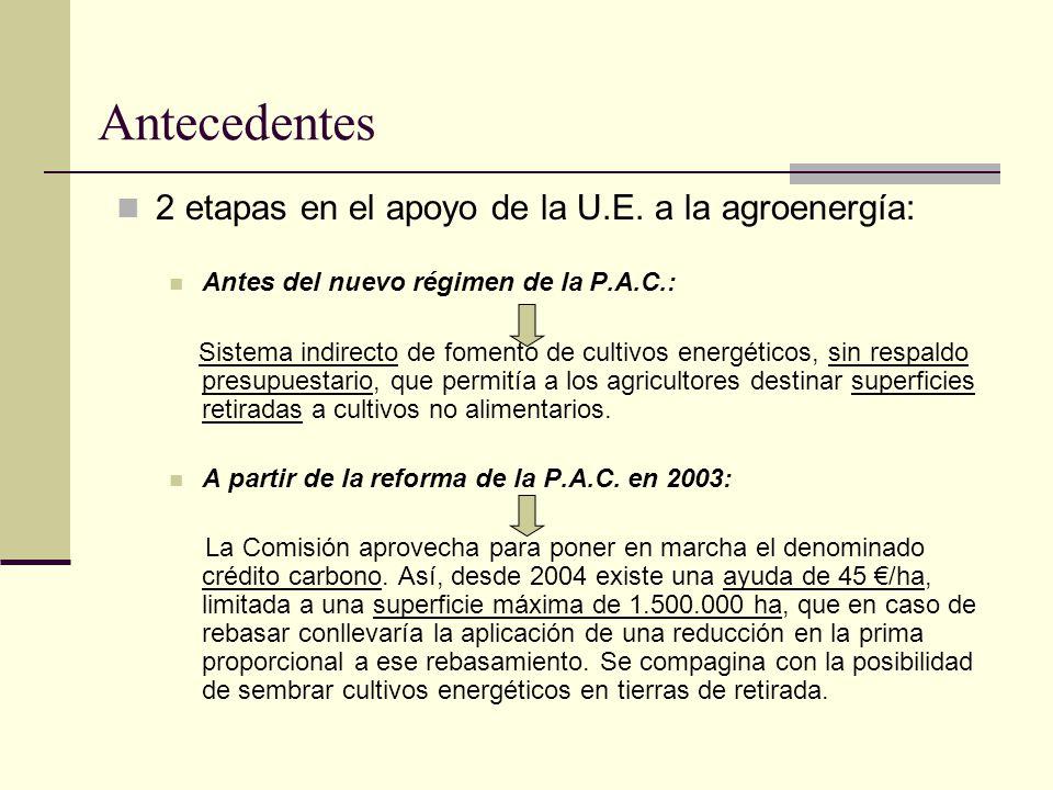 Antecedentes 2 etapas en el apoyo de la U.E. a la agroenergía: Antes del nuevo régimen de la P.A.C.: Sistema indirecto de fomento de cultivos energéti