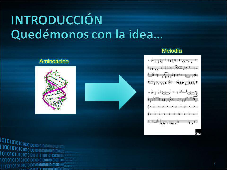 Los aminoácidos son las unidades elementales ladrillos constitutivas de las moléculas denominadas Proteínas Podemos encontrar 20 aminoácidos diferentes en las proteínas.