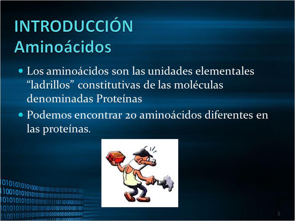 Los aminoácidos son las unidades elementales ladrillos constitutivas de las moléculas denominadas Proteínas Podemos encontrar 20 aminoácidos diferente