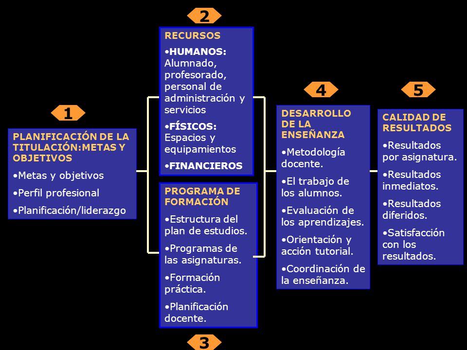 PLANIFICACIÓN DE LA TITULACIÓN:METAS Y OBJETIVOS Metas y objetivos Perfil profesional Planificación/liderazgo RECURSOS HUMANOS: Alumnado, profesorado, personal de administración y servicios FÍSICOS: Espacios y equipamientos FINANCIEROS PROGRAMA DE FORMACIÓN Estructura del plan de estudios.
