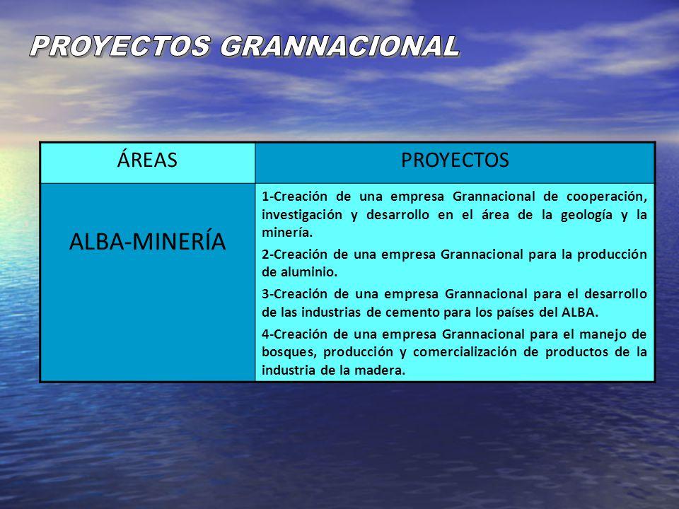 ÁREASPROYECTOS ALBA-MINERÍA 1-Creación de una empresa Grannacional de cooperación, investigación y desarrollo en el área de la geología y la minería.