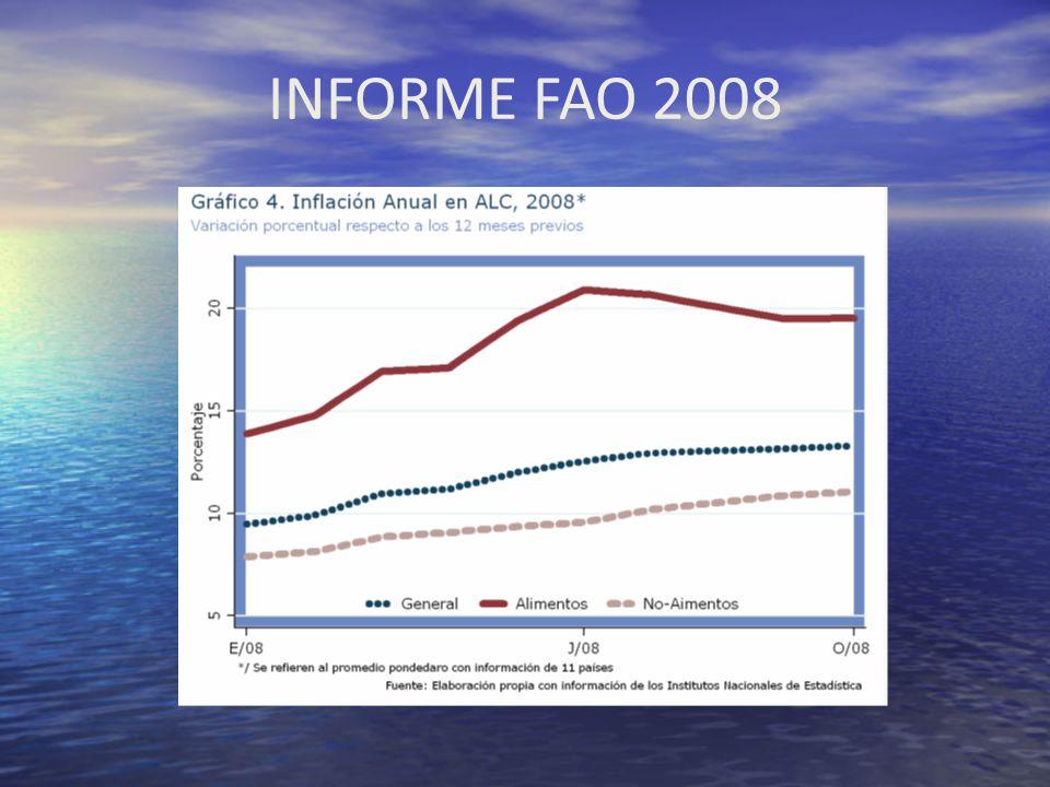 INFORME FAO 2008