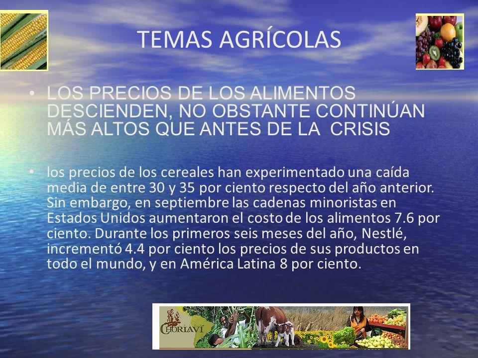 TEMAS AGRÍCOLAS LOS PRECIOS DE LOS ALIMENTOS DESCIENDEN, NO OBSTANTE CONTINÚAN MÁS ALTOS QUE ANTES DE LA CRISIS los precios de los cereales han experi