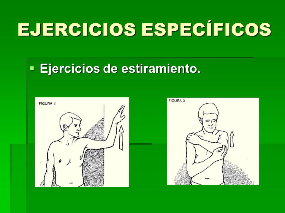 EJERCICIOS ESPECÍFICOS Ejercicios de estiramiento.