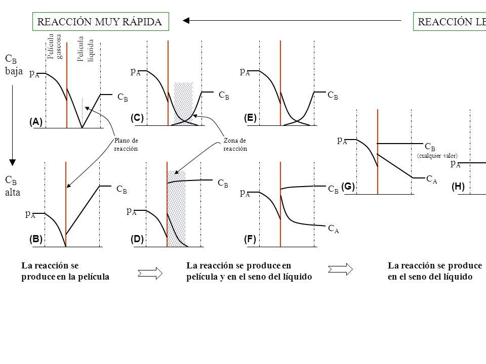 REACCIÓN MUY RÁPIDAREACCIÓN LENTA Película gaseosa Película líquida pApA Plano de reacción CBCB pApA CBCB pApA Zona de reacción CBCB pApA CBCB pApA CBCB C B alta C B baja pApA CBCB CACA pApA CBCB CACA (cualquier valor) pApA CBCB CACA La reacción se produce en la película La reacción se produce en película y en el seno del líquido La reacción se produce en el seno del líquido (A) (B) (C)(E) (D)(F) (G)(H)