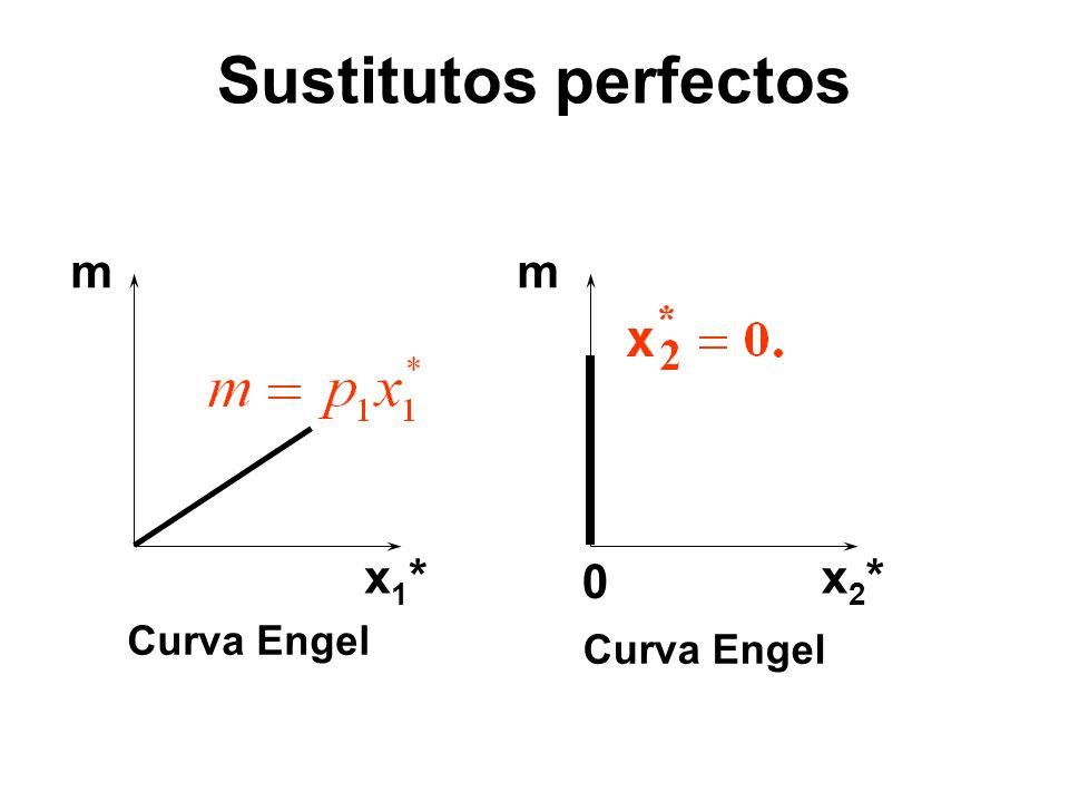 mm x1*x1*x2*x2* 0 Curva Engel Sustitutos perfectos