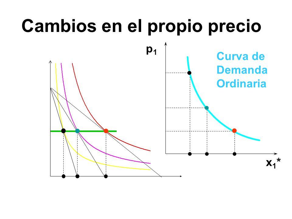 x 1 *(p 1 ) p1p1 x1*x1* Cambios en el propio precio Curva de Demanda Ordinaria