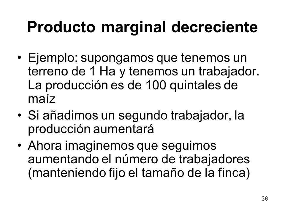 36 Producto marginal decreciente Ejemplo: supongamos que tenemos un terreno de 1 Ha y tenemos un trabajador. La producción es de 100 quintales de maíz