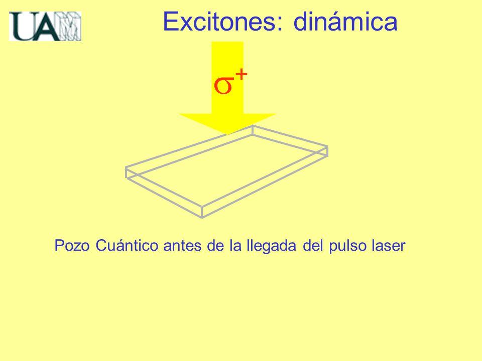 Excitones: dinámica Pozo Cuántico antes de la llegada del pulso laser +