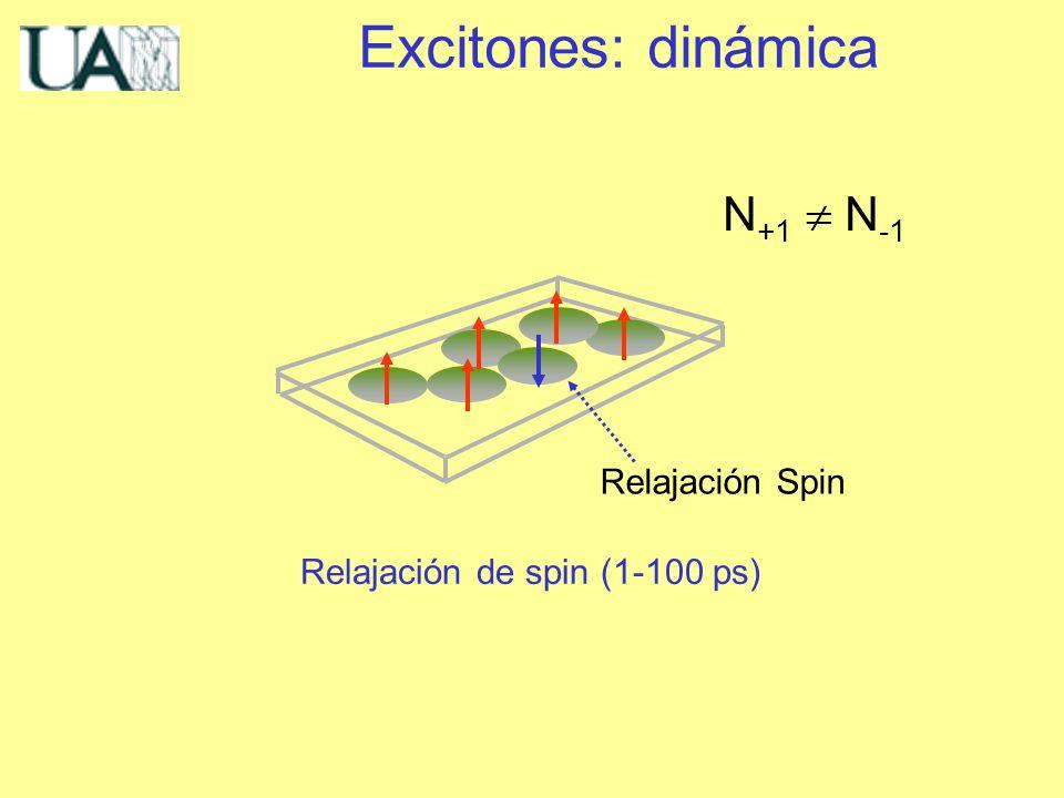 Relajación Spin Relajación de spin (1-100 ps) N +1 N -1 Excitones: dinámica