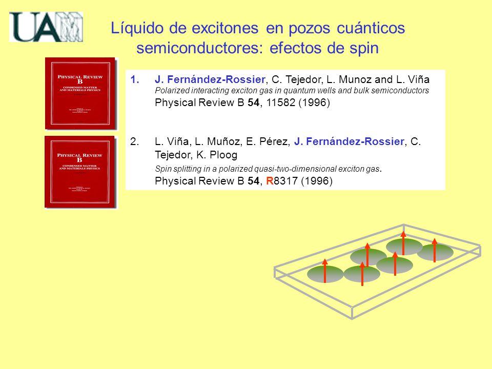 Líquido de excitones en pozos cuánticos semiconductores: efectos de spin 1.J.