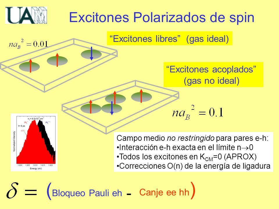 Campo medio no restringido para pares e-h: Interacción e-h exacta en el límite n 0 Todos los excitones en K CM =0 (APROX) Correcciones O(n) de la energía de ligadura Excitones Polarizados de spin Excitones libres (gas ideal) Excitones acoplados (gas no ideal) ( Bloqueo Pauli eh Canje ee hh ) -