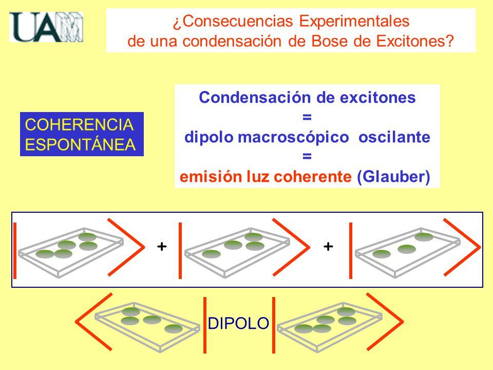 Condensación de excitones = dipolo macroscópico oscilante = emisión luz coherente (Glauber) COHERENCIA ESPONTÁNEA ¿Consecuencias Experimentales de una condensación de Bose de Excitones.