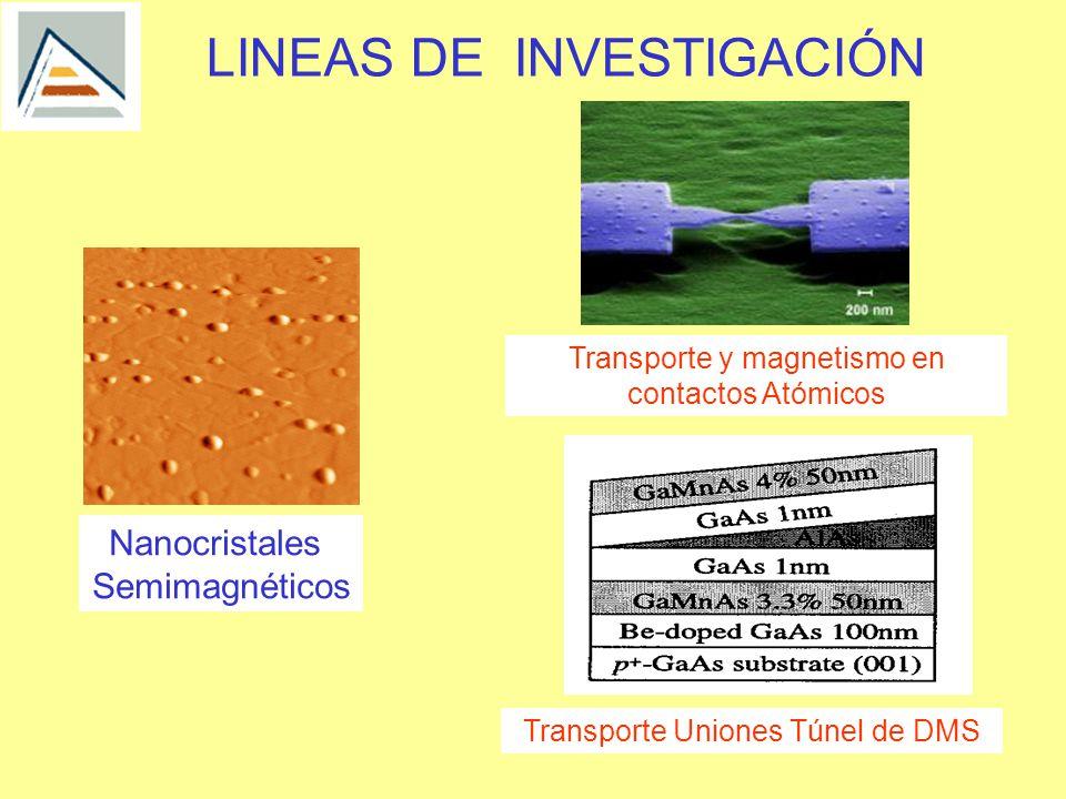 LINEAS DE INVESTIGACIÓN Transporte y magnetismo en contactos Atómicos Nanocristales Semimagnéticos Transporte Uniones Túnel de DMS