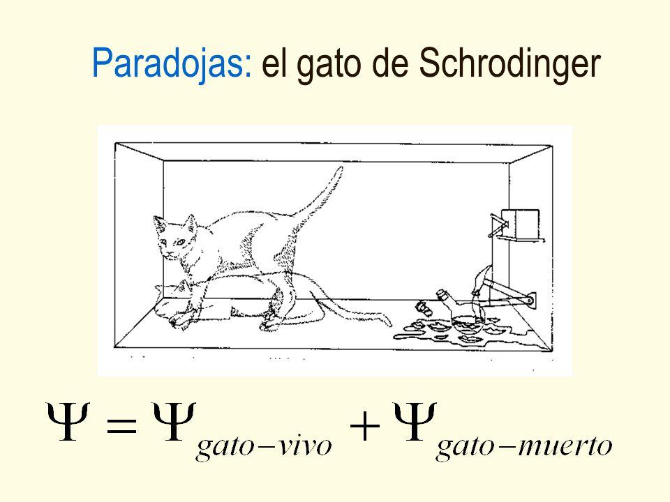 Paradojas: el gato de Schrodinger