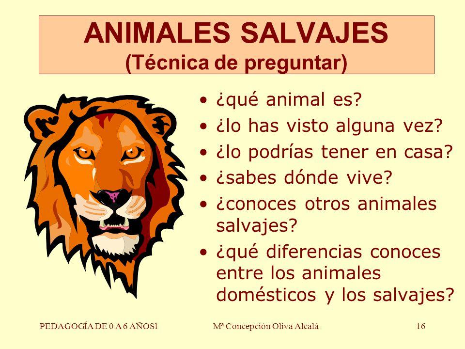 PEDAGOGÍA DE 0 A 6 AÑOSlMª Concepción Oliva Alcalá16 ¿qué animal es? ¿lo has visto alguna vez? ¿lo podrías tener en casa? ¿sabes dónde vive? ¿conoces
