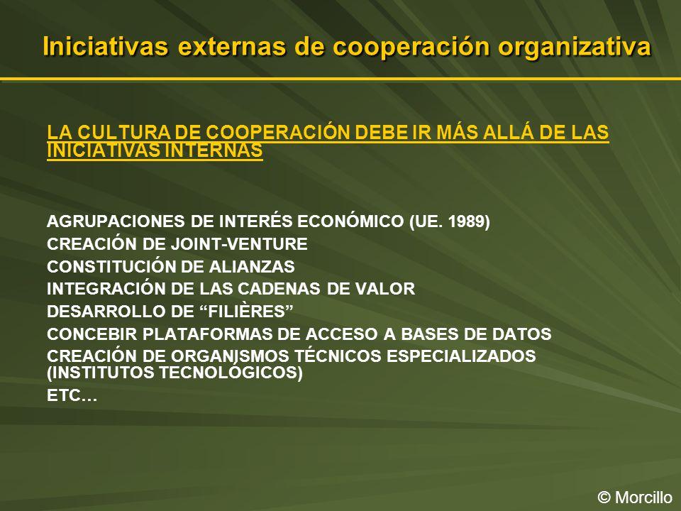 Iniciativas externas de cooperación organizativa © Morcillo LA CULTURA DE COOPERACIÓN DEBE IR MÁS ALLÁ DE LAS INICIATIVAS INTERNAS AGRUPACIONES DE INTERÉS ECONÓMICO (UE.