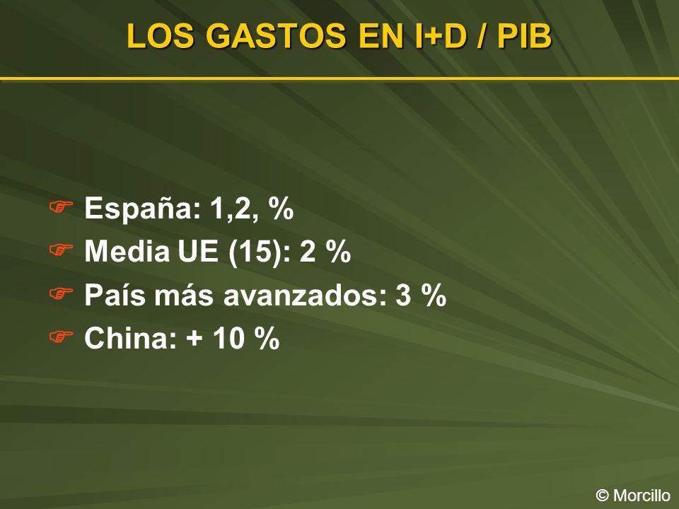 LOS GASTOS EN I+D / PIB © Morcillo España: 1,2, % Media UE (15): 2 % País más avanzados: 3 % China: + 10 %